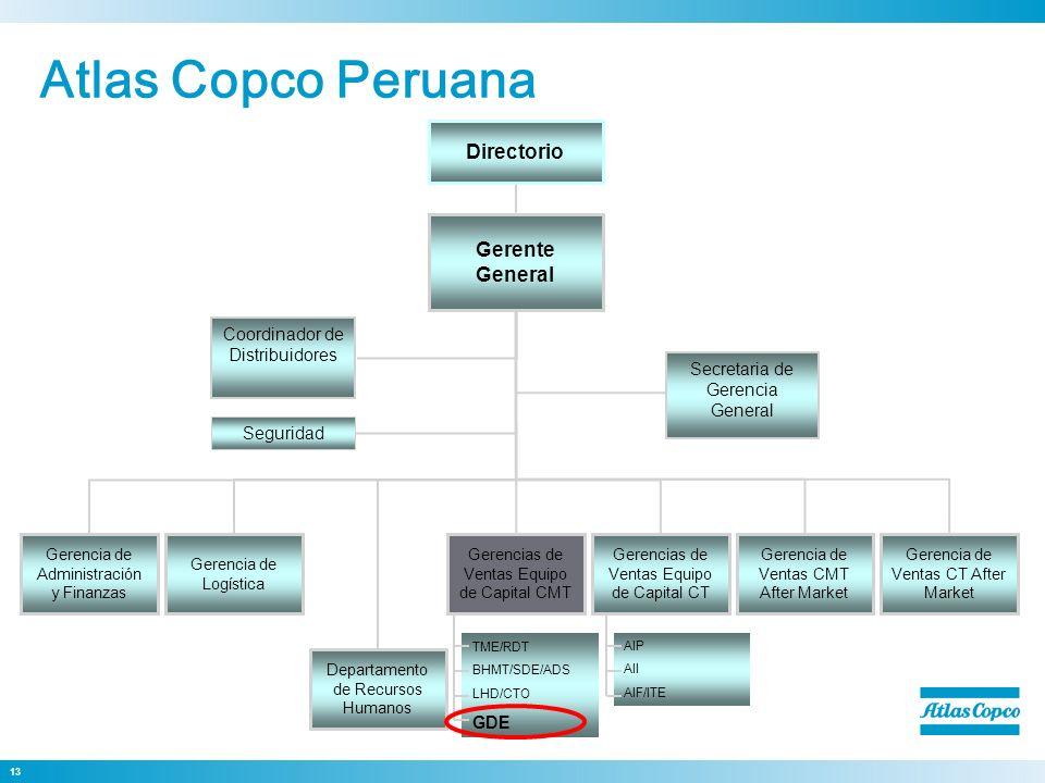 13 Dirección General Gerencia de Administración y Finanzas Coordinador de Distribuidores Gerente General Directorio Gerencia de Logística Departamento