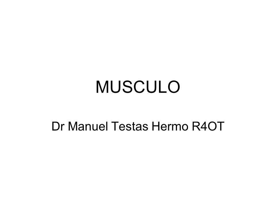 MUSCULO Dr Manuel Testas Hermo R4OT