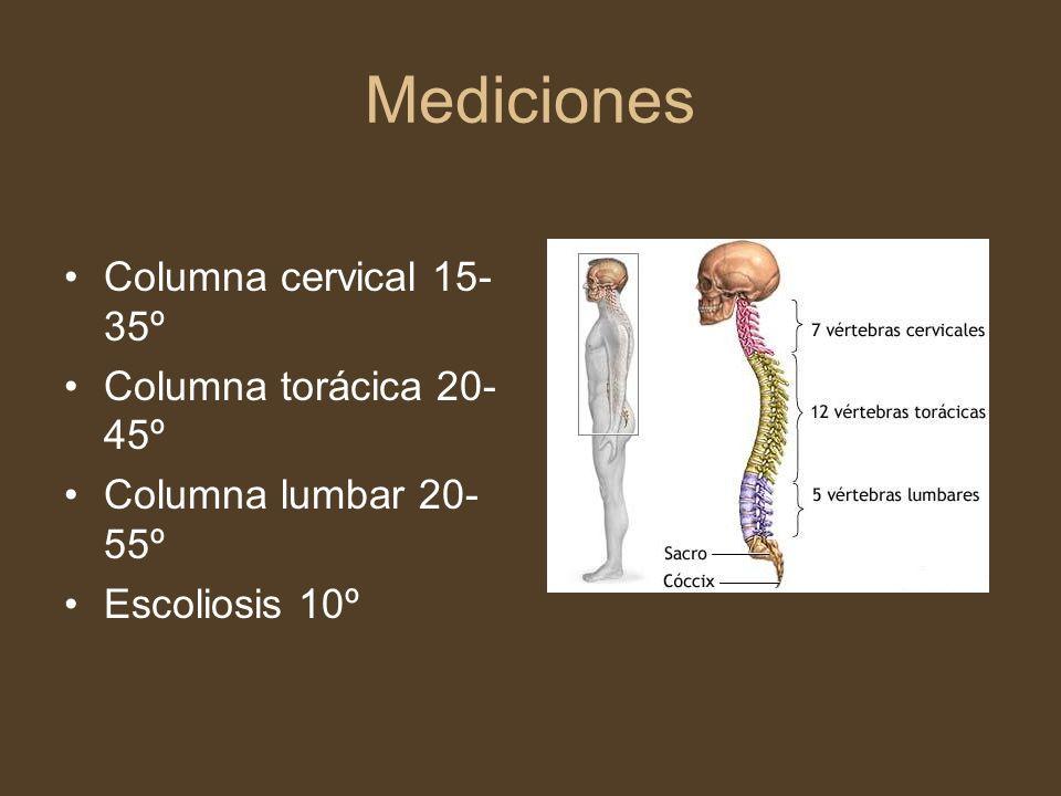 Mediciones Columna cervical 15- 35º Columna torácica 20- 45º Columna lumbar 20- 55º Escoliosis 10º