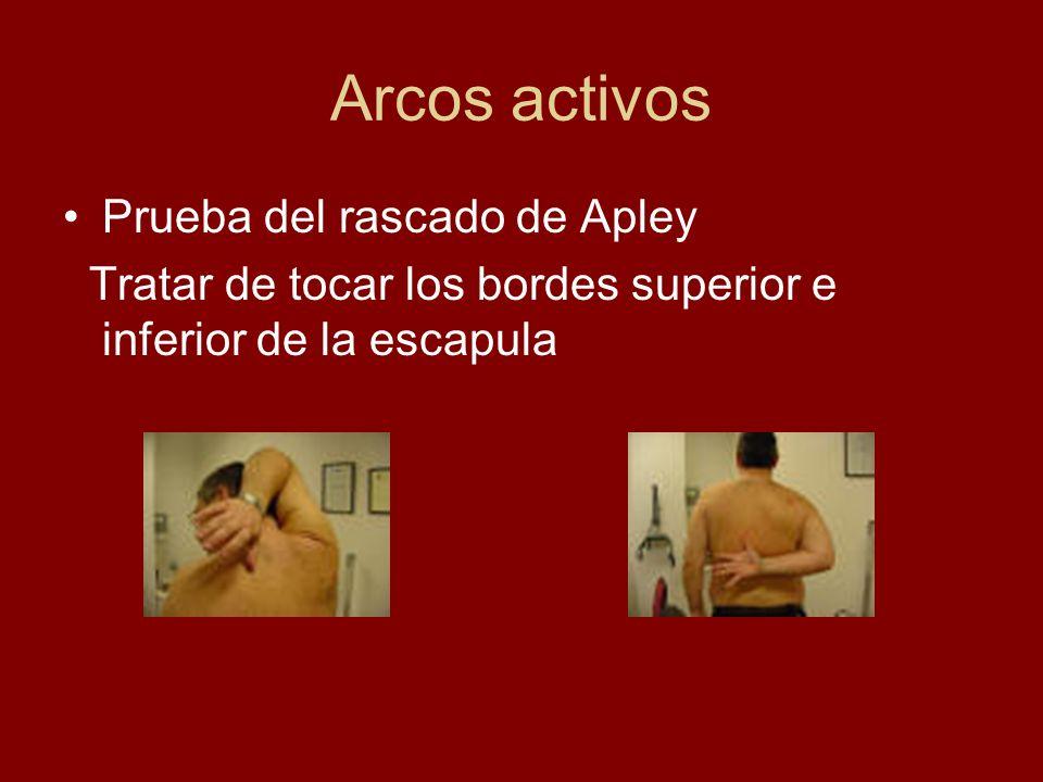 Arcos activos Prueba del rascado de Apley Tratar de tocar los bordes superior e inferior de la escapula