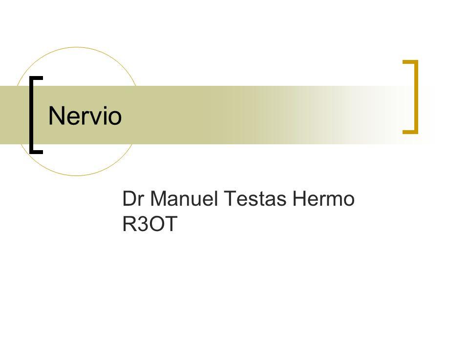 Nervio Dr Manuel Testas Hermo R3OT