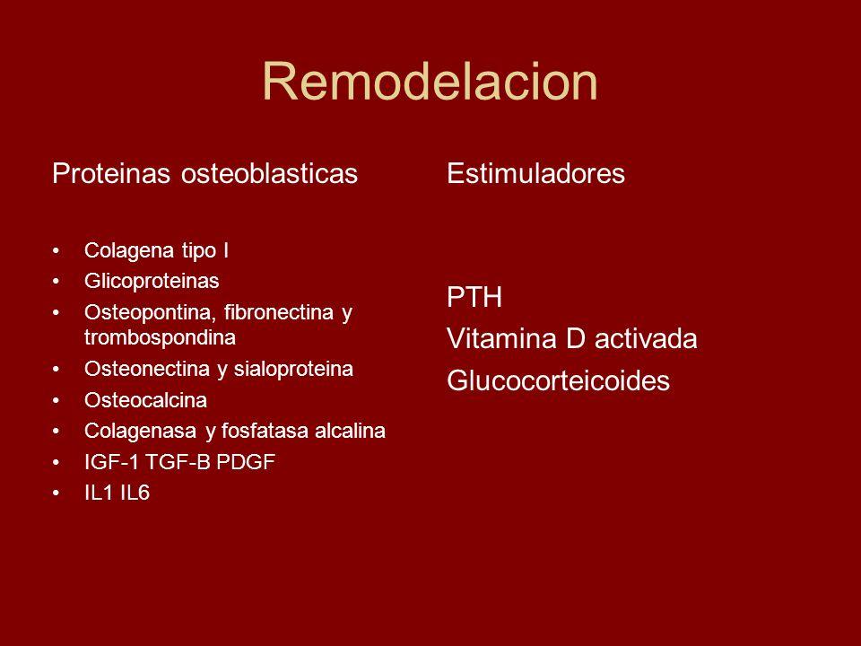 Remodelacion Proteinas osteoblasticas Colagena tipo I Glicoproteinas Osteopontina, fibronectina y trombospondina Osteonectina y sialoproteina Osteocal