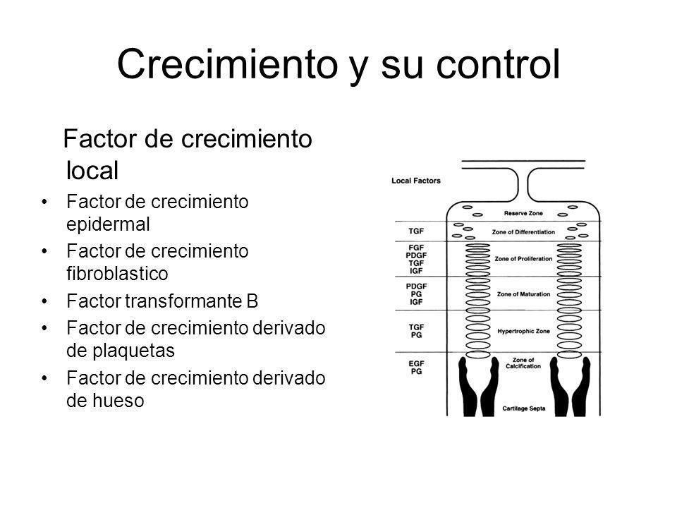 Crecimiento y su control Factor de crecimiento local Factor de crecimiento epidermal Factor de crecimiento fibroblastico Factor transformante B Factor