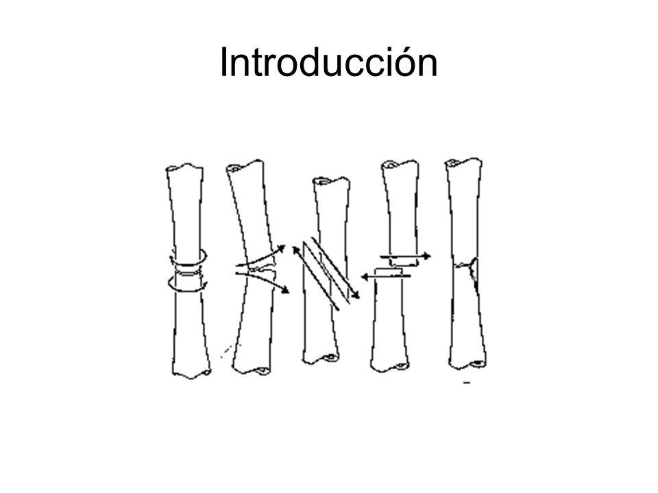 Cosas que deben de saber La estabilidad de una depende de varios factores: La estabilidad en torsión depende de la cantidad de tornillos colocado a cada lado de la fractura La estabilidad en doblamiento depende del espacio entre los orificios de cada tornillo