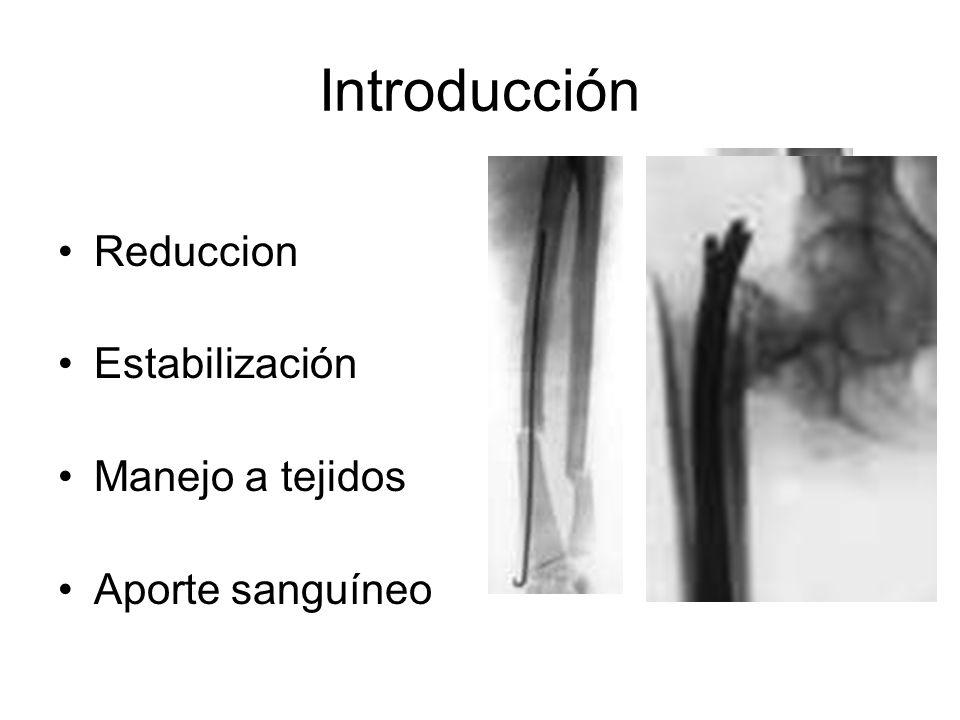 Reduccion Estabilización Manejo a tejidos Aporte sanguíneo