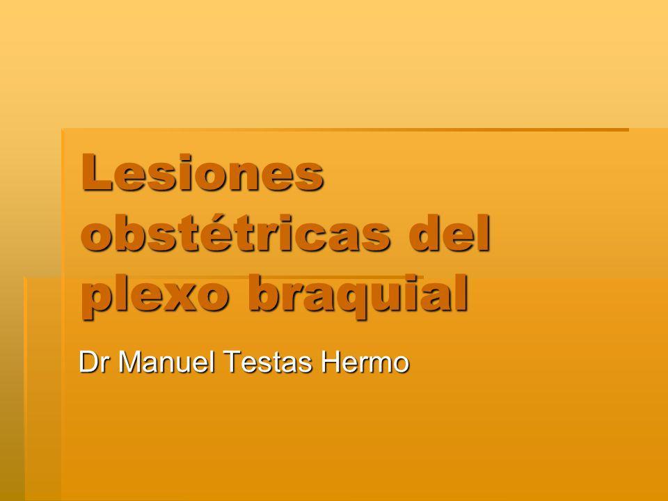 Lesiones obstétricas del plexo braquial Dr Manuel Testas Hermo