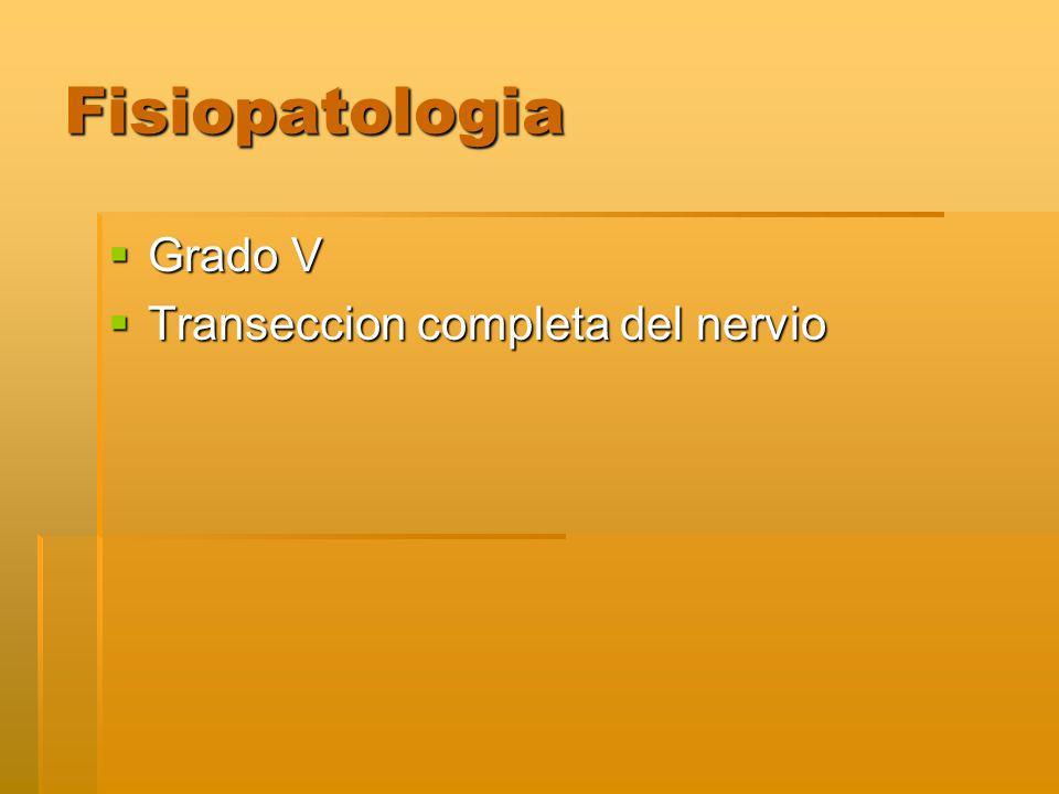 Fisiopatologia Grado V Grado V Transeccion completa del nervio Transeccion completa del nervio