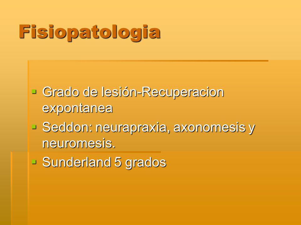 Fisiopatologia Grado de lesión-Recuperacion expontanea Grado de lesión-Recuperacion expontanea Seddon: neurapraxia, axonomesis y neuromesis.