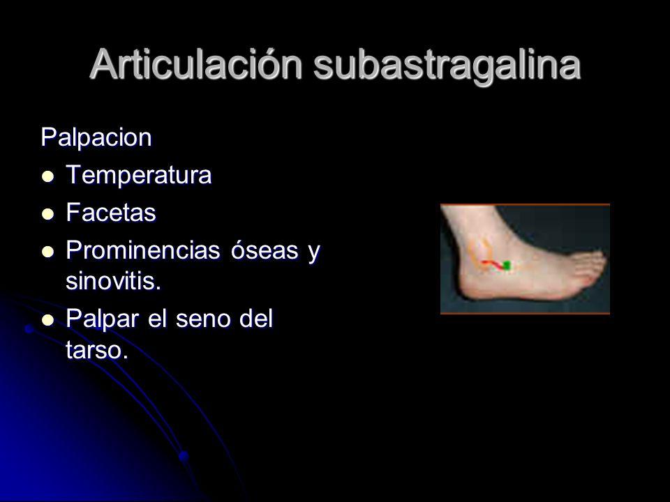Articulación subastragalina Palpacion Temperatura Temperatura Facetas Facetas Prominencias óseas y sinovitis. Prominencias óseas y sinovitis. Palpar e