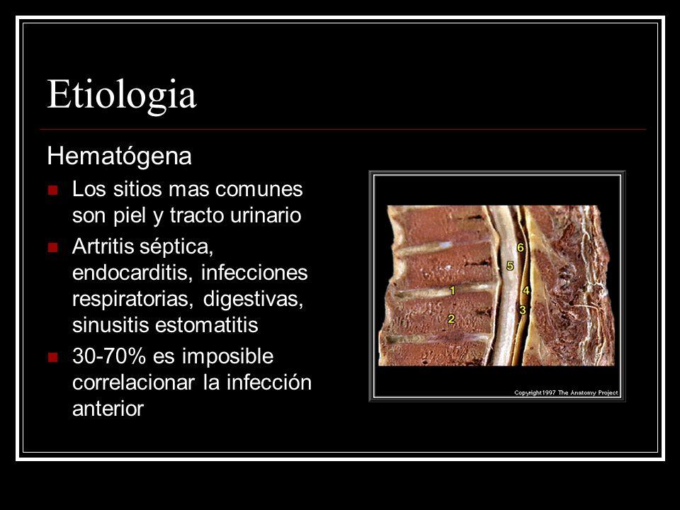 Etiologia Hematógena Los sitios mas comunes son piel y tracto urinario Artritis séptica, endocarditis, infecciones respiratorias, digestivas, sinusiti