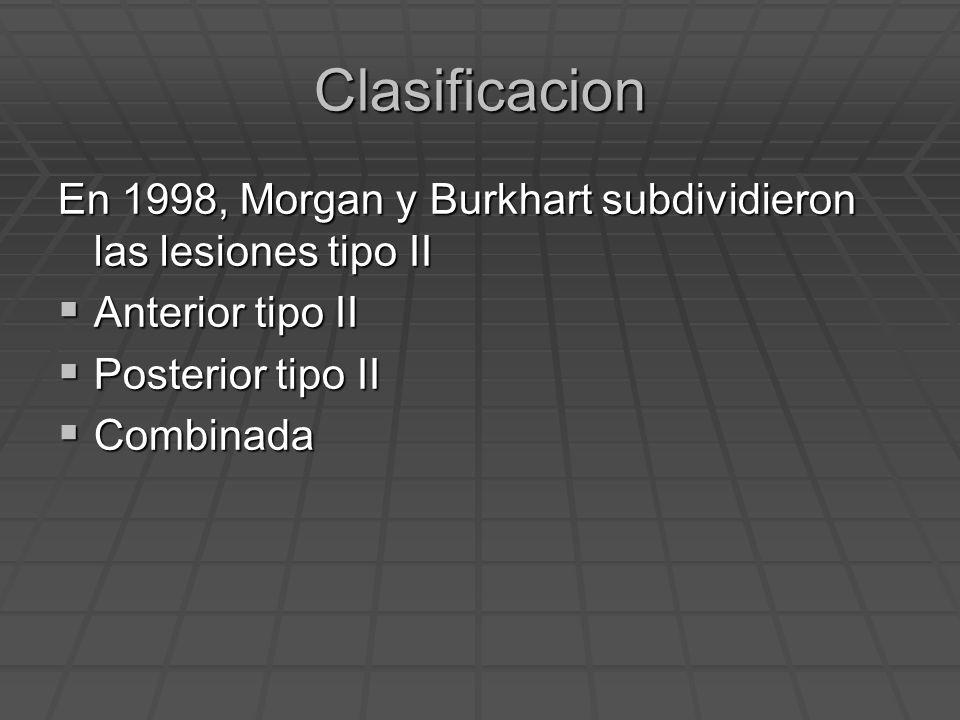 Clasificacion En 1998, Morgan y Burkhart subdividieron las lesiones tipo II Anterior tipo II Anterior tipo II Posterior tipo II Posterior tipo II Comb
