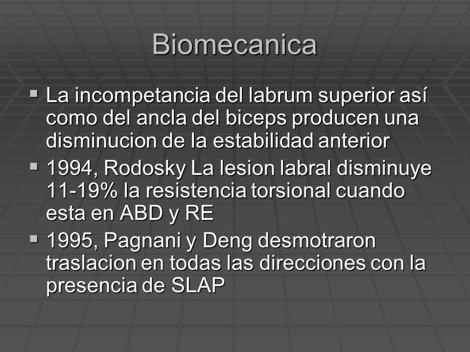 Biomecanica La incompetancia del labrum superior así como del ancla del biceps producen una disminucion de la estabilidad anterior La incompetancia de