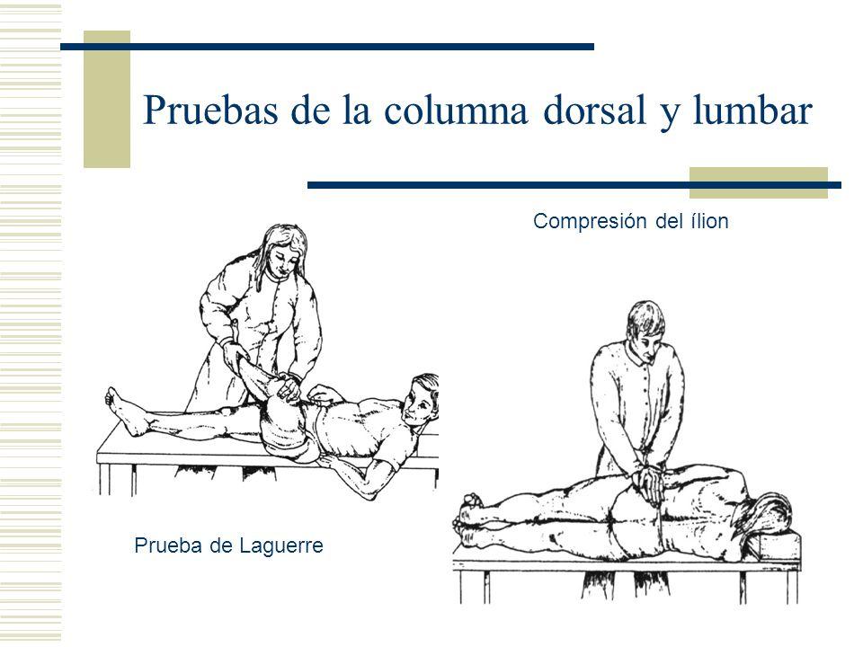 Pruebas de la columna dorsal y lumbar Prueba de Laguerre Compresión del ílion