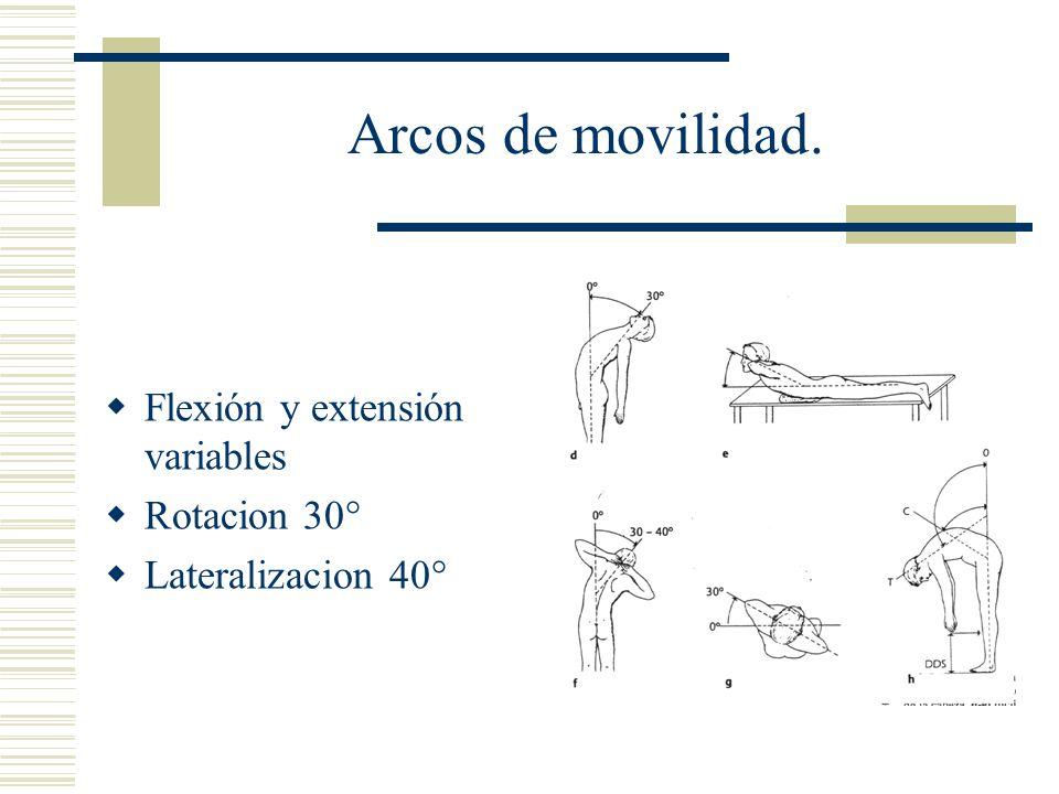 Arcos de movilidad. Flexión y extensión variables Rotacion 30° Lateralizacion 40°