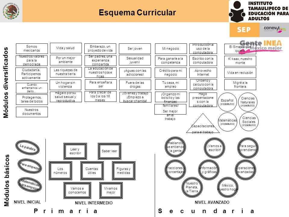 Español (propedéutico) Matemáticas (propedéutico) Ciencias Sociales (propedéutico) Ciencias Naturales (propedéutico) Módulos diversificados El Sinaloa