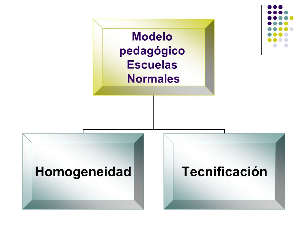 Modelo pedagógico Escuelas Normales HomogeneidadTecnificación