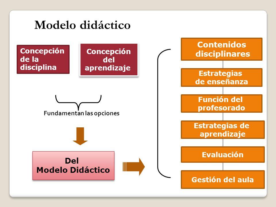 Modelo didáctico Fundamentan las opciones Concepción del aprendizaje Concepción del aprendizaje Del Modelo Didáctico Del Modelo Didáctico Contenidos d