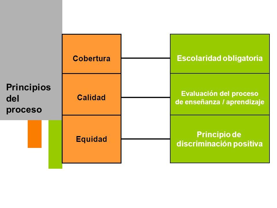 Principios del proceso Cobertura Calidad Equidad Escolaridad obligatoria Evaluación del proceso de enseñanza / aprendizaje Principio de discriminación