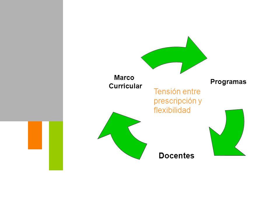 Programas Docentes Marco Curricular Tensión entre prescripción y flexibilidad
