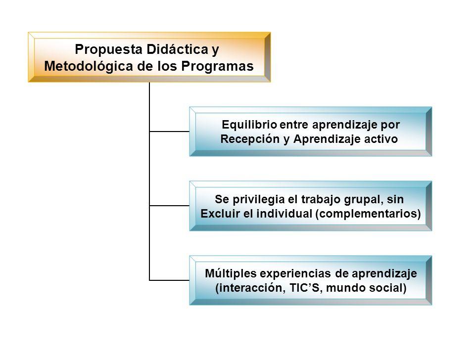 Propuesta Didáctica y Metodológica de los Programas Equilibrio entre aprendizaje por Recepción y Aprendizaje activo Se privilegia el trabajo grupal, s