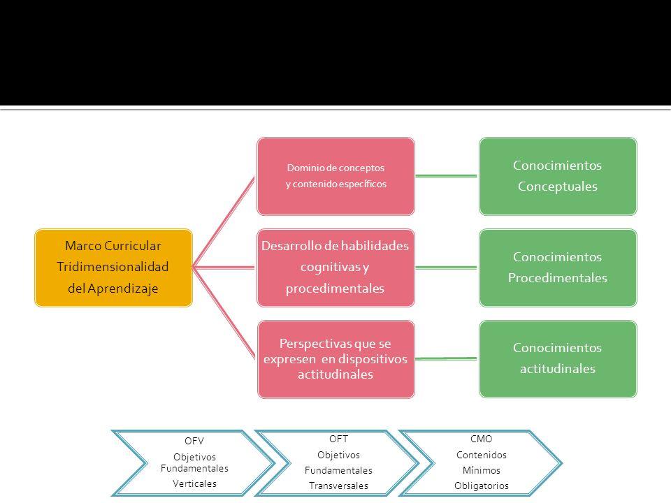 Marco Curricular Tridimensionalidad del Aprendizaje Dominio de conceptos y contenido específicos Conocimientos Conceptuales Desarrollo de habilidades