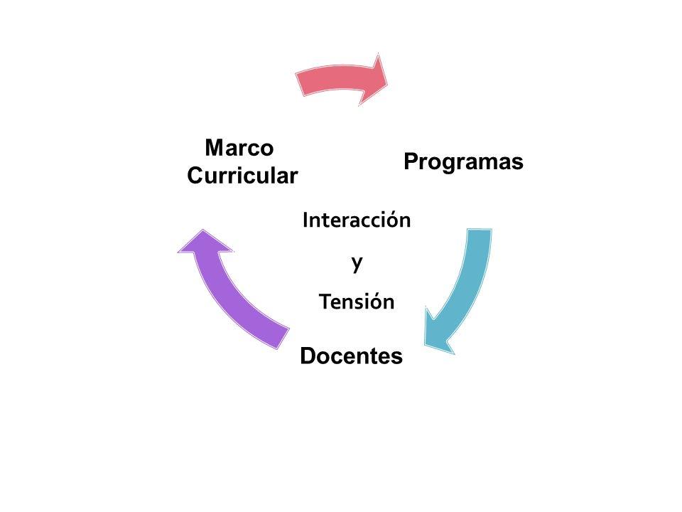 Programas Docentes Marco Curricular Interacción y Tensión