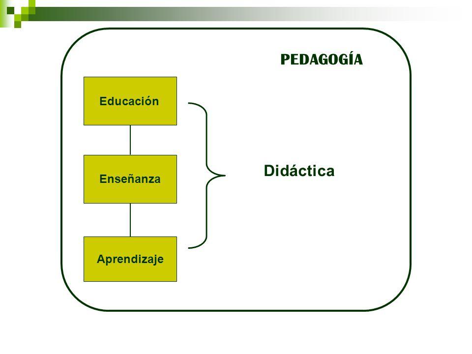 Enseñanza Aprendizaje Didáctica Educación PEDAGOGÍA