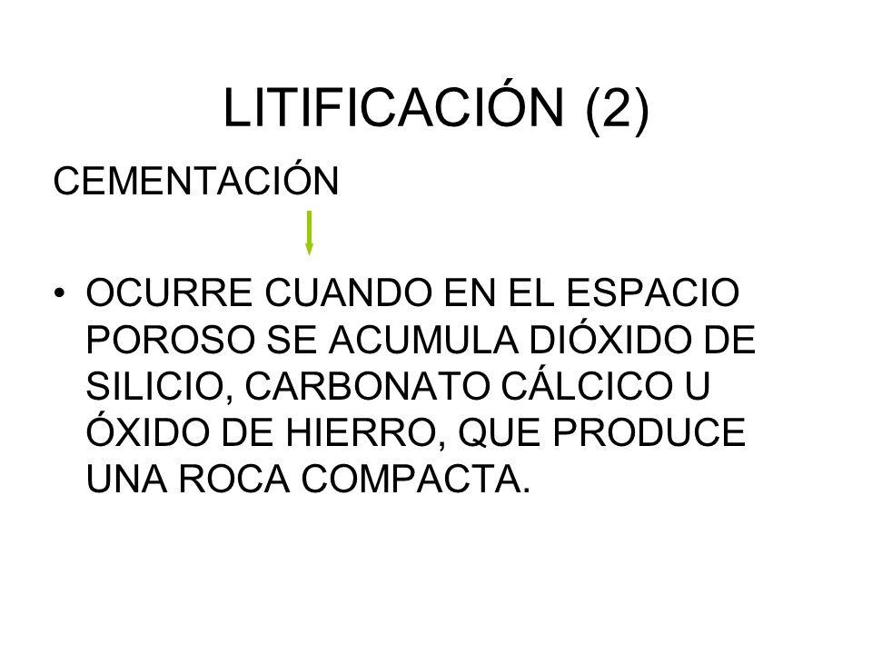 LITIFICACIÓN (1) COMPACTACIÓN: SEDIMENTOS DE LAS CAPAS INFERIORES SON PRESIONADOS POR ELLAS, EXPELIENDO EL AGUA Y DISMINUYENDO EL ESPACIO POROSO.