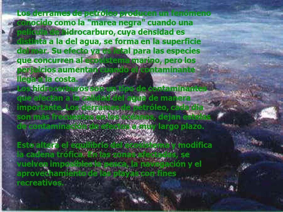 Los derrames de petróleo producen un fenómeno conocido como la marea negra cuando una película de hidrocarburo, cuya densidad es distinta a la del agua, se forma en la superficie del mar.
