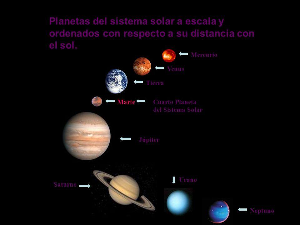 Marte Integrantes: IIcs B Valentina Capodiferro # 04 Vanessa Rodríguez # 33 Luís Rojas # 34