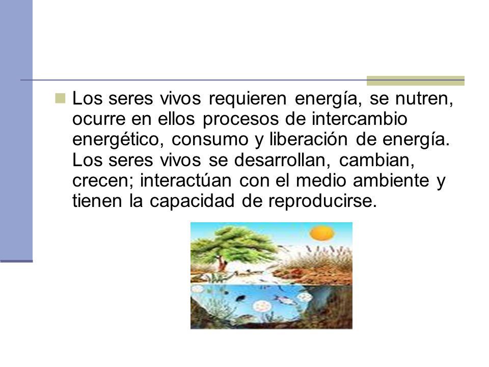 Los seres vivos requieren energía, se nutren, ocurre en ellos procesos de intercambio energético, consumo y liberación de energía. Los seres vivos se