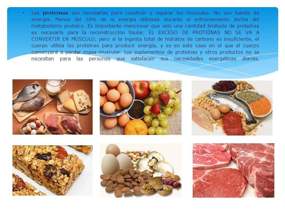 Las proteínas son necesarias para construir y reparar los músculos. No son fuente de energía. Menos del 10% de la energía utilizada durante el entrena