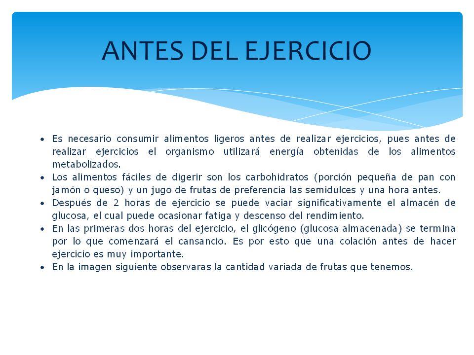 ANTES DEL EJERCICIO