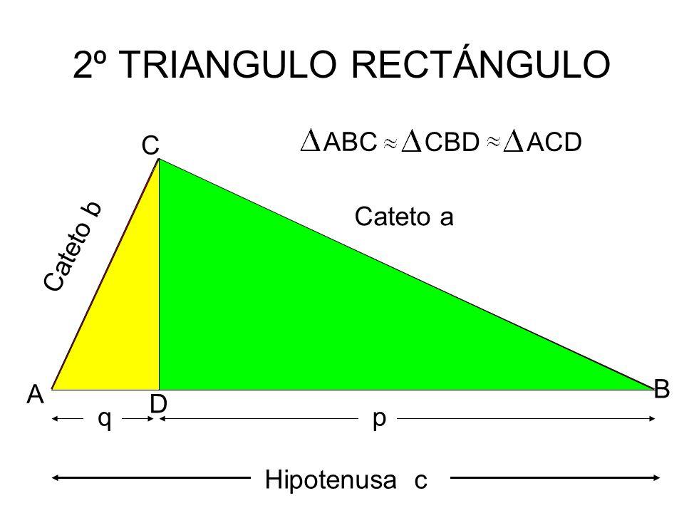 Autoria: Yerko Echeverría A. 2º TRIANGULO RECTÁNGULO C D B A Cateto b Cateto a Hipotenusa c q p Altura h CBDACD ABC