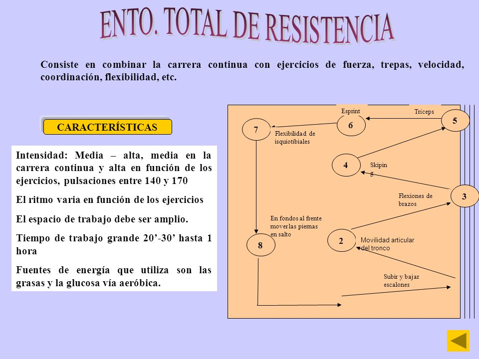 Sistema de entrenamiento de la fuerza óptimo para el desarrollo de la fuerza resistencia.