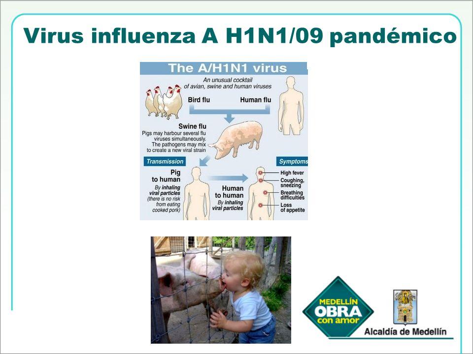 Virus influenza A H1N1/09 pandémico