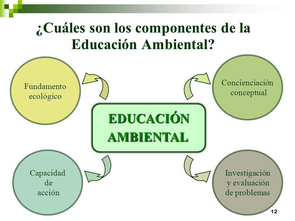 11 La Educación Ambiental es educación sobre cómo continuar el desarrollo al mismo tiempo que se protege, preserva y conserva los sistemas de soporte