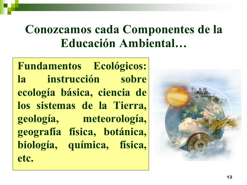 12 ¿Cuáles son los componentes de la Educación Ambiental? Fundamento ecológico Concienciación conceptual Capacidad de acción Investigación y evaluació