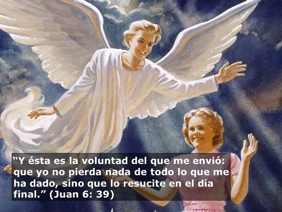 Y ésta es la voluntad del que me envió: que yo no pierda nada de todo lo que me ha dado, sino que lo resucite en el día final. (Juan 6: 39)