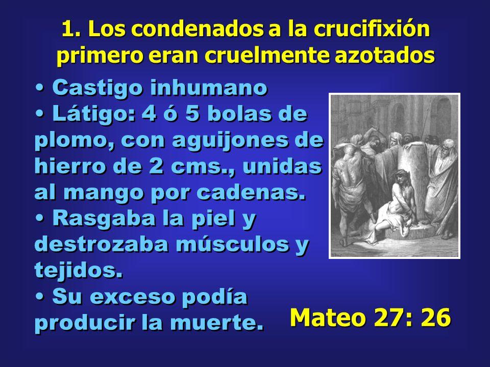 1. Los condenados a la crucifixión primero eran cruelmente azotados Castigo inhumano Látigo: 4 ó 5 bolas de plomo, con aguijones de hierro de 2 cms.,