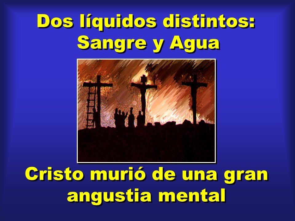 Dos líquidos distintos: Sangre y Agua Dos líquidos distintos: Sangre y Agua Cristo murió de una gran angustia mental Cristo murió de una gran angustia