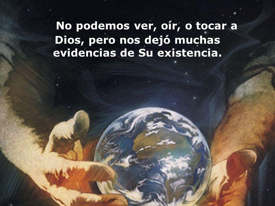 No podemos ver, oír, o tocar a Dios, pero nos dejó muchas evidencias de Su existencia.