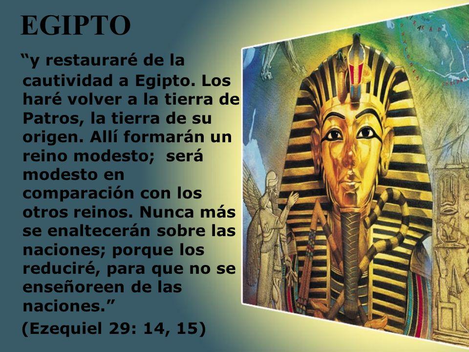 EGIPTO y restauraré de la cautividad a Egipto. Los haré volver a la tierra de Patros, la tierra de su origen. Allí formarán un reino modesto; será mod
