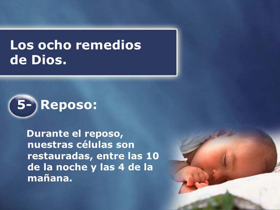 Los ocho remedios de Dios. 5- Reposo: Durante el reposo, nuestras células son restauradas, entre las 10 de la noche y las 4 de la mañana.
