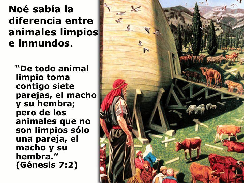 Noé sabía la diferencia entre animales limpios e inmundos. De todo animal limpio toma contigo siete parejas, el macho y su hembra; pero de los animale