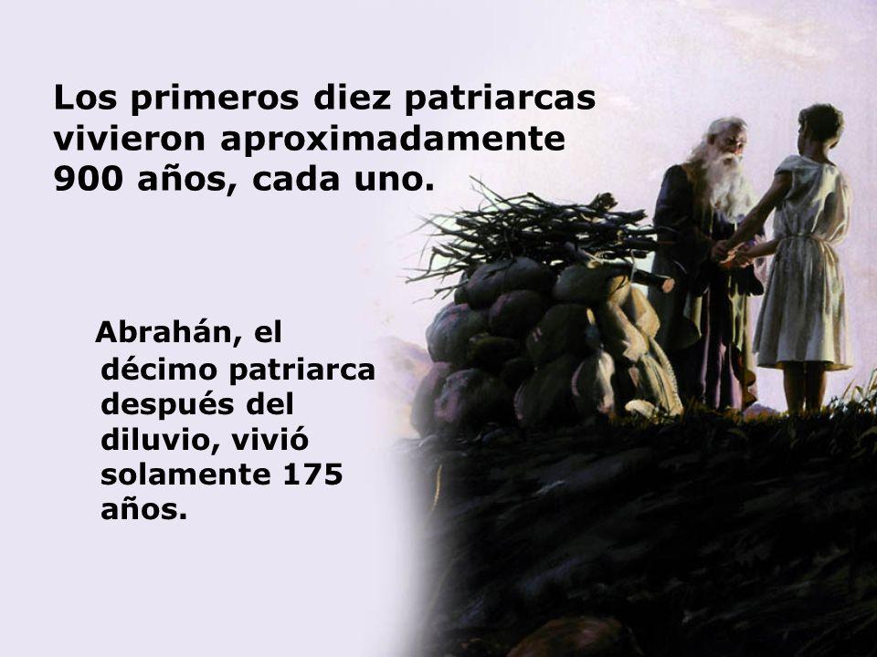 Los primeros diez patriarcas vivieron aproximadamente 900 años, cada uno. Abrahán, el décimo patriarca después del diluvio, vivió solamente 175 años.