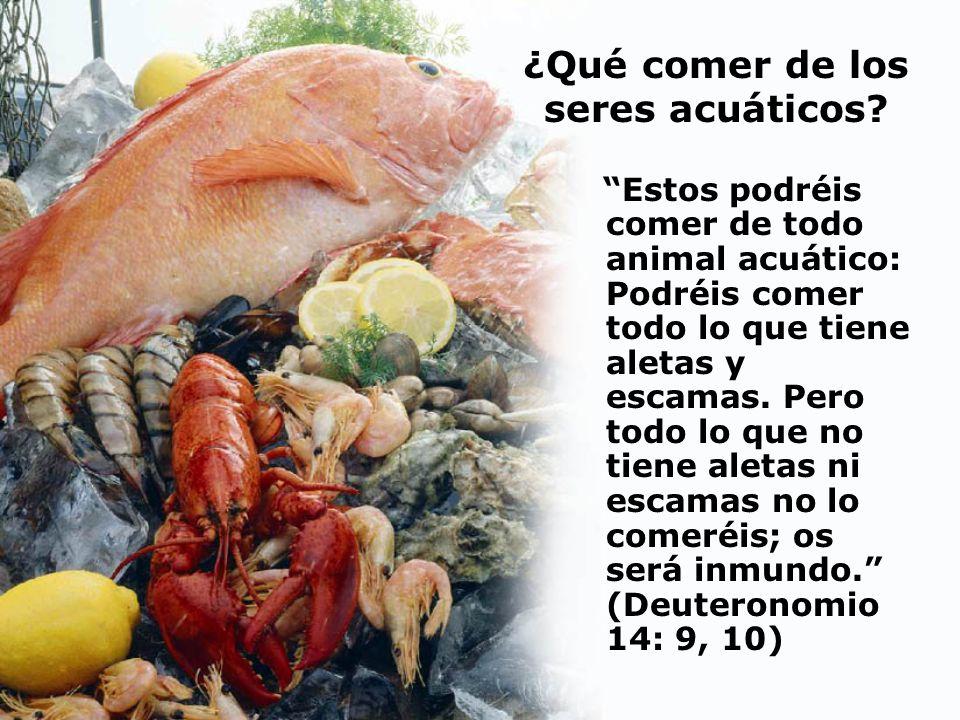 ¿Qué comer de los seres acuáticos? Estos podréis comer de todo animal acuático: Podréis comer todo lo que tiene aletas y escamas. Pero todo lo que no