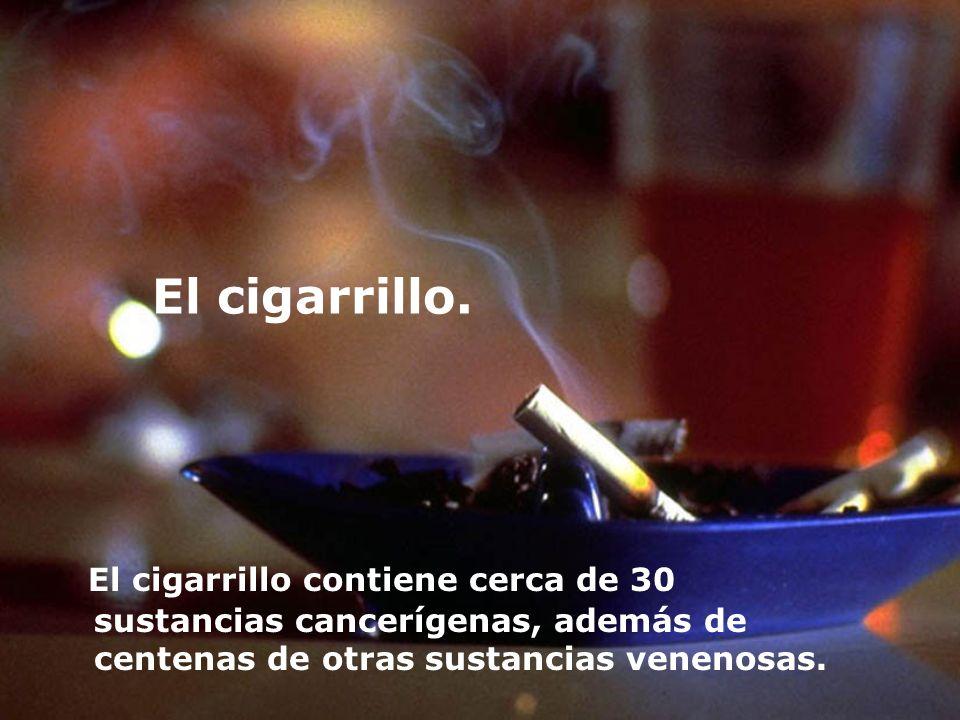 El cigarrillo. El cigarrillo contiene cerca de 30 sustancias cancerígenas, además de centenas de otras sustancias venenosas.