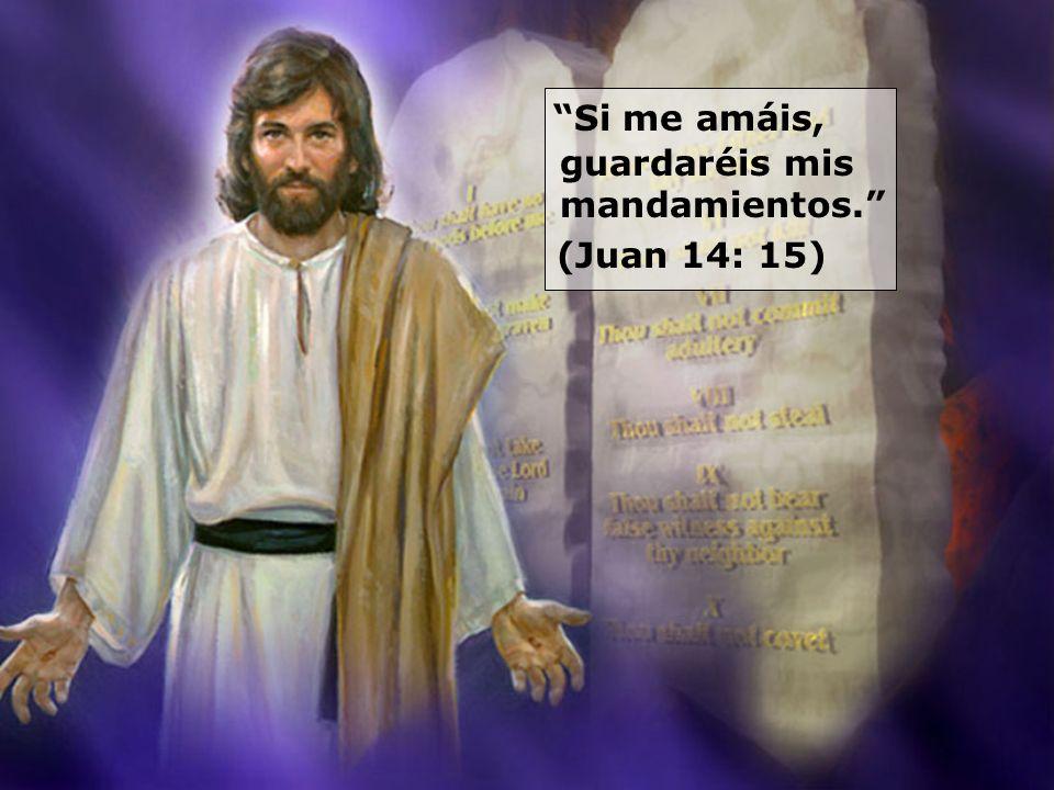 Si me amáis, guardaréis mis mandamientos. (Juan 14: 15)