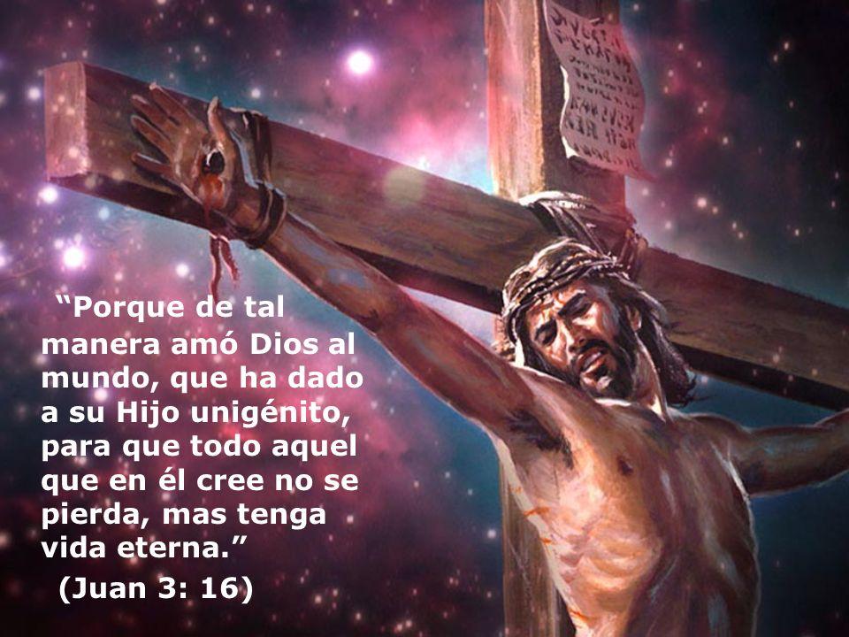Porque de tal manera amó Dios al mundo, que ha dado a su Hijo unigénito, para que todo aquel que en él cree no se pierda, mas tenga vida eterna. (Juan
